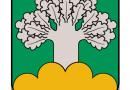 Medumu pagasta parvaldes atskaite par paveikto 2016.gadā